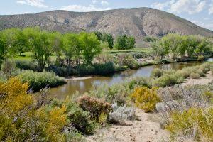 5980 Sierra Vista Land For Sale